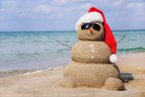 Winter Vacation Sandman